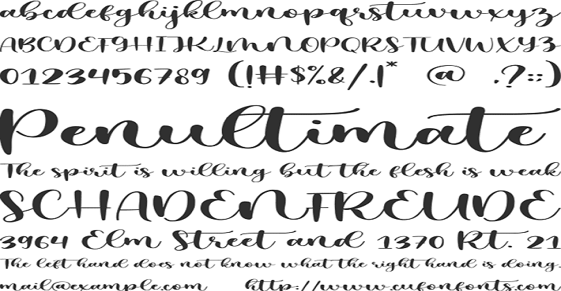 Mystical Snow Calligraphy Font Free Download