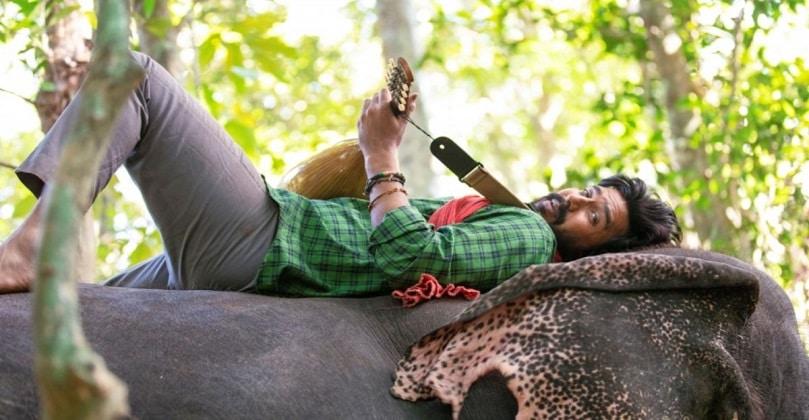 Kaadan 2021 Movie Download in Isaimini moviesda Tamilyogi Kuttymovies